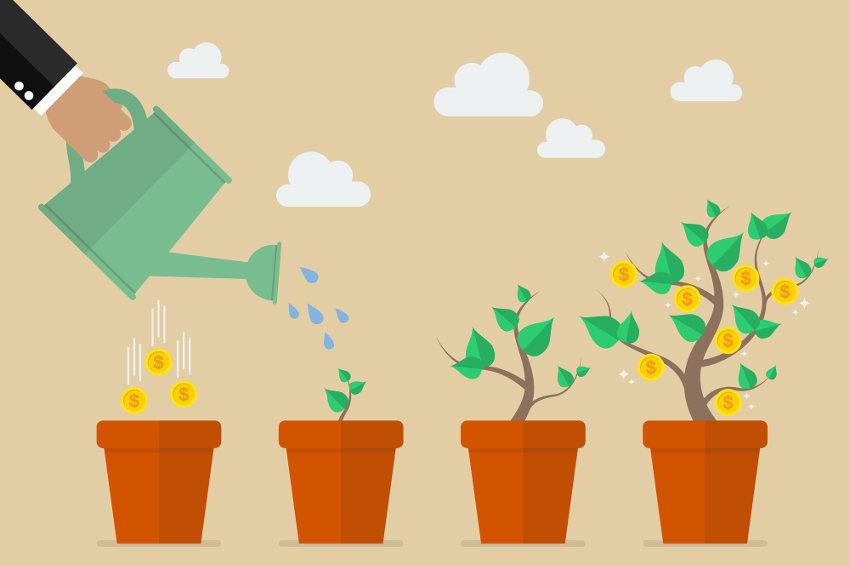 Nurturing business growth